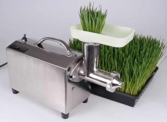 Commercial Wheatgrass Juicer | LB 33